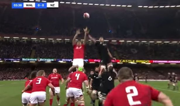 lineout 1.jpg